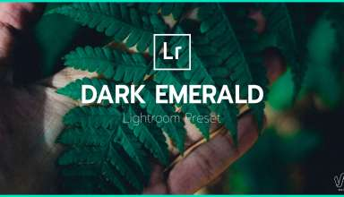 Dark Emerald Lightroom Preset