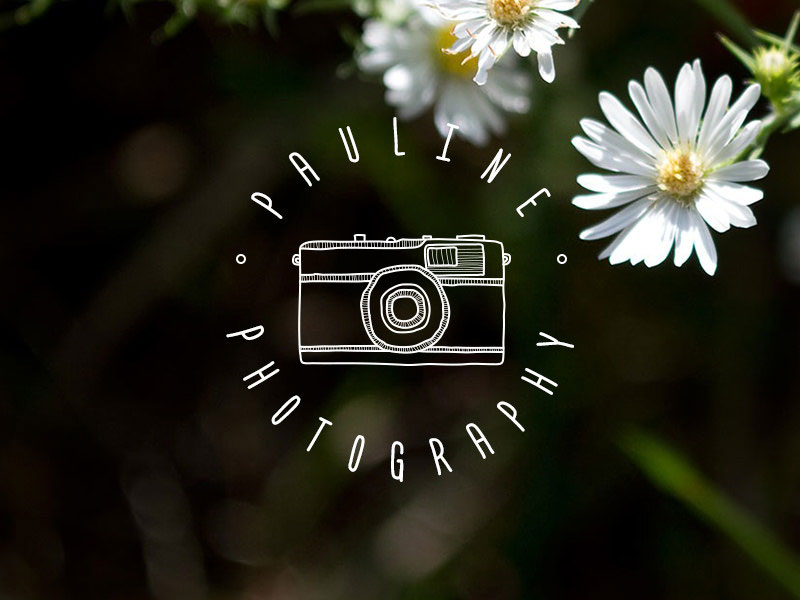 100-watermark-for-photography