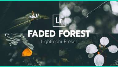 Faded Forest - Lightroom Preset